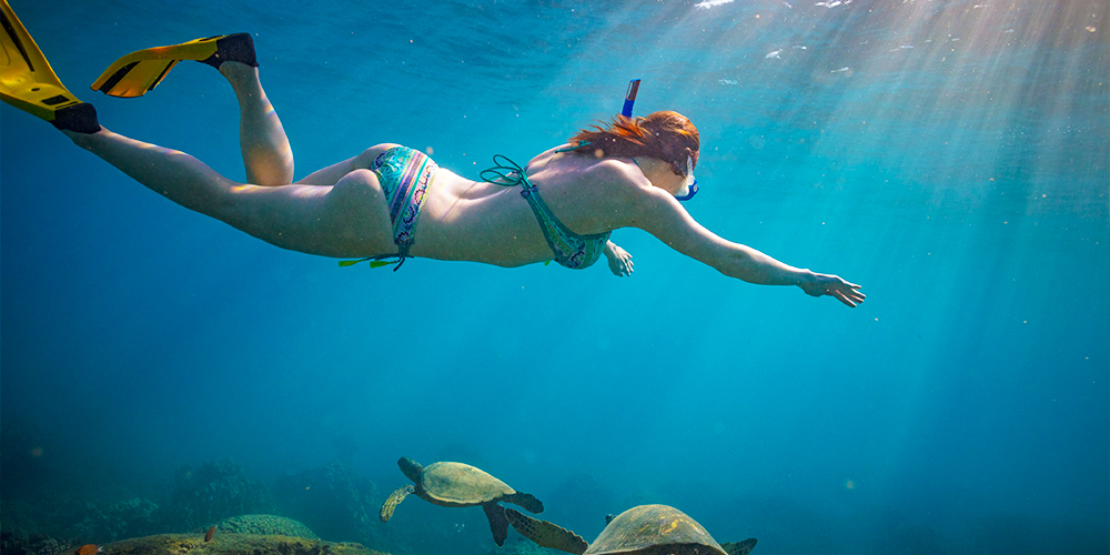 Snorkeling in Hurghada - 9 Days Hurghada, Aswan & Abu Simbel Holiday Package - Tours From Hurghada